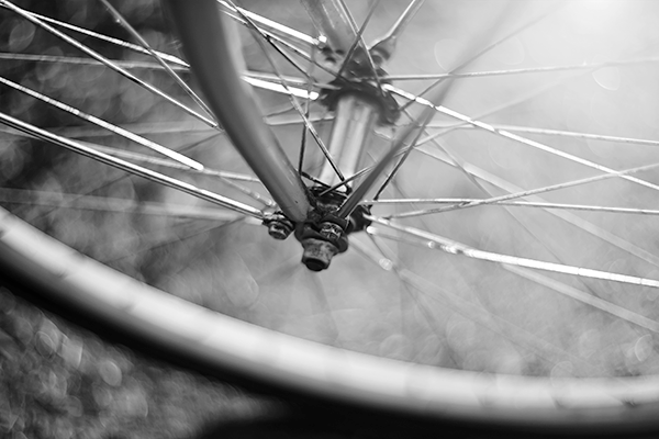 Black and white image of bicycle wheel