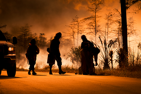 Silhouette of firefighters against bushfire
