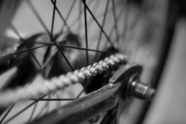 Bike riding celebrating