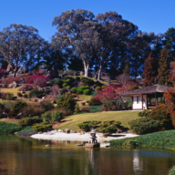 Photo of Cowra Botanical Gardens